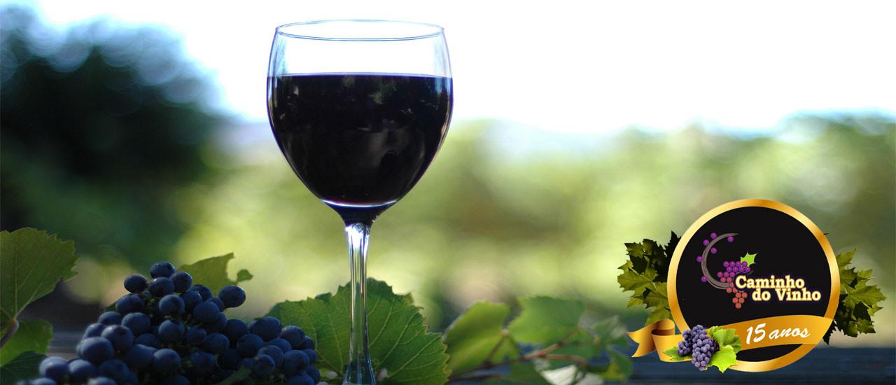Confira as muitas atrações do Caminho do Vinho!